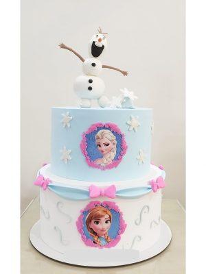 ماکت کیک فروزن